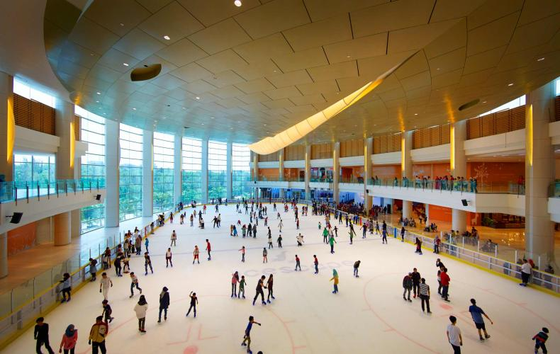 Icescape at IOI City Mall